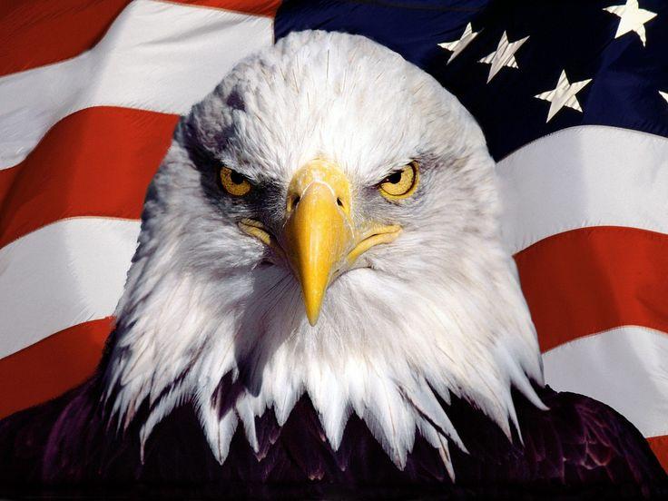 85c6fd28ad6b1b0575d919ae60f90923--american-flag-wallpaper-wallpapers-for-desktop